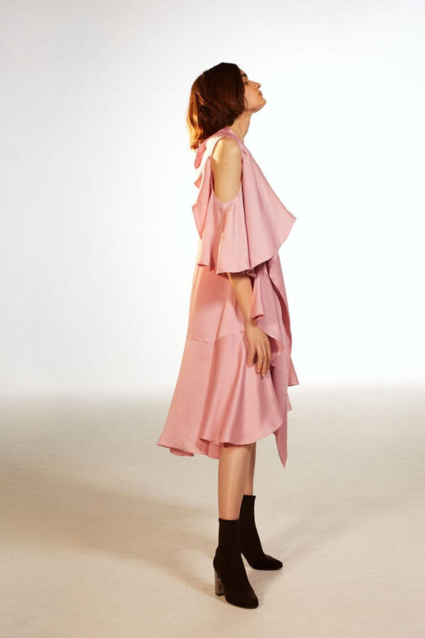 SEVA DRESS; PINK HAMMERED SILK DRESS; RODEBJER